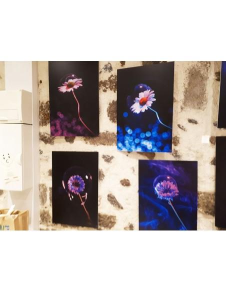 Photo Art galerie Fot'Océane - Colección de fotografías Flum