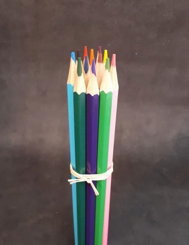 Paquete de 12 lápices de colores.