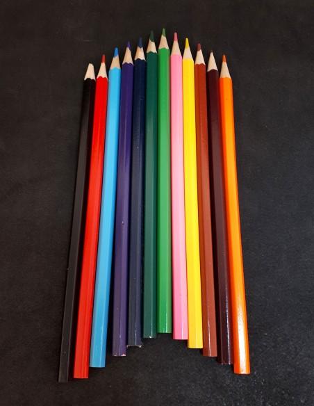 12 crayons de couleur pour coloriage.